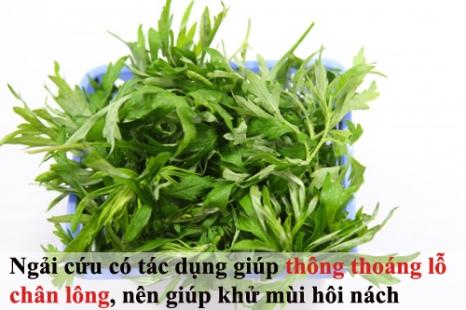 tam-biet-mui-hoi-nach-kho-chiu-ngay-he-tri-hoi-nach-bang-nguyen-lieu-thien-nhien--3--1464136790-width500height333