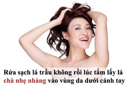tam-biet-mui-hoi-nach-kho-chiu-ngay-he-tri-hoi-nach-bang-nguyen-lieu-thien-nhien--5--1464136790-width500height331
